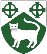Device: Per chevron argent and vert, two equal-armed Celtic crosses and a cat statant guardant counterchanged